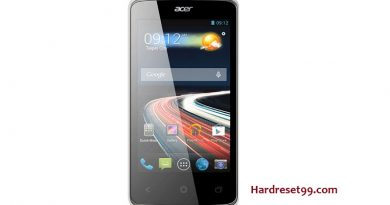 Acer Liquid Z4 Duo Features